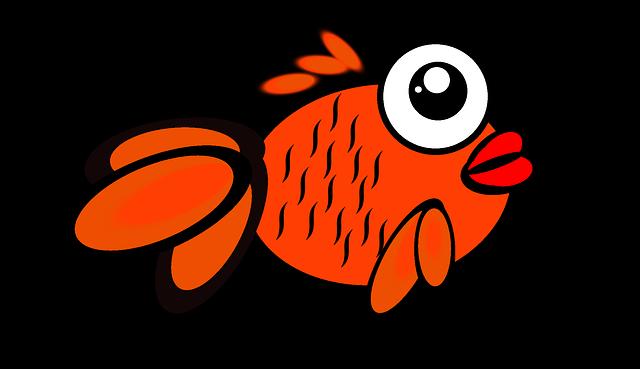 fish-260709_640