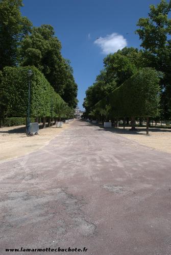 Allée centrale du parc