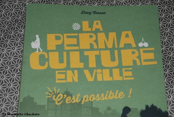 Mon stage d initiation à la permaculture avec Kiwi-Nature   La ... 9cd1296721e6
